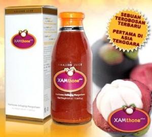 Manggis - Xamthone - Jamu Herbal